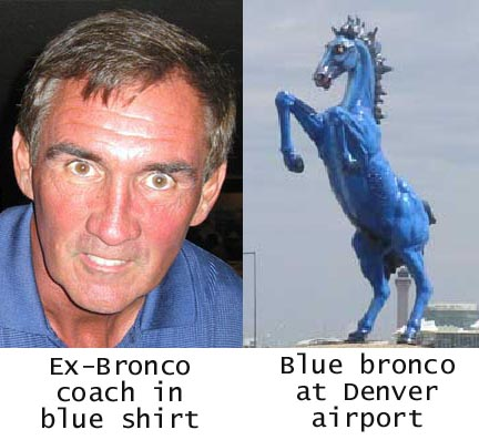 mike shanahan horse face